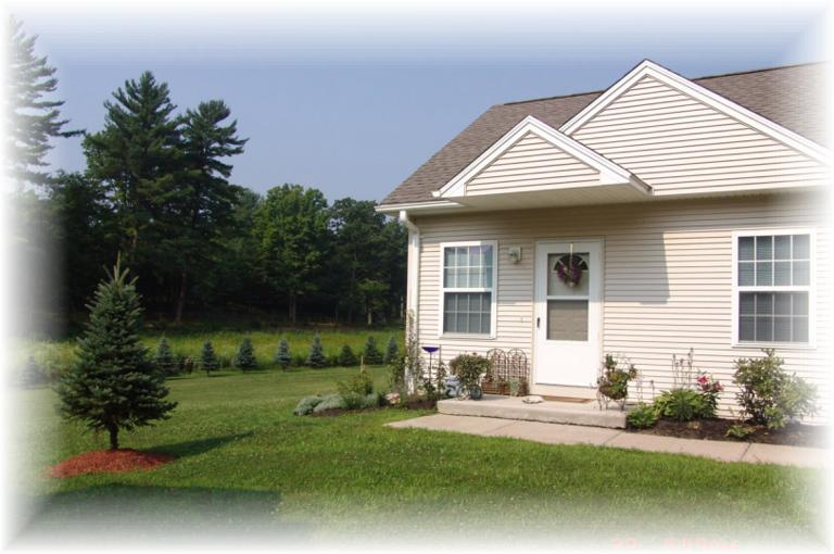 terryville senior singles Zillow has 2,028 single family rental listings in connecticut use our detailed filters to find the perfect place, then get in touch with the landlord.
